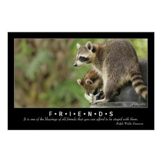 Friends & Blessings Friendship Quote Raccoon 48x32 Poster