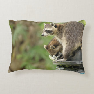 Friends & Blessings Friendship Quote Raccoons Accent Pillow