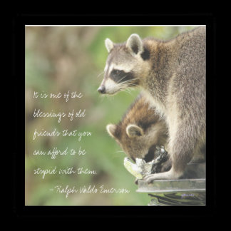 Friends & Blessings Friendship Quote Raccoons Acrylic Tray