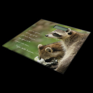 Friends & Blessings Friendship Quote Raccoons Bathroom Scale