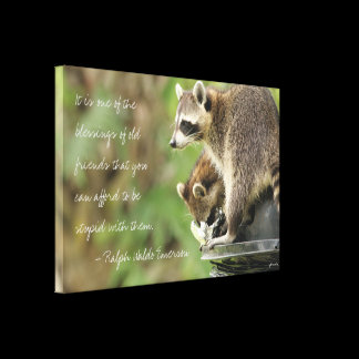 Friends & Blessings Friendship Quote Raccoons Canvas Print