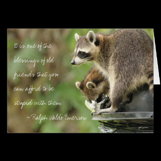 Friends & Blessings Friendship Quote Raccoons Card