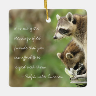 Friends & Blessings Friendship Quote Raccoons Ceramic Ornament