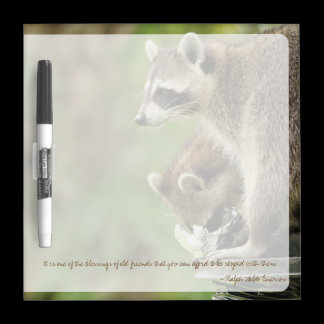 Friends & Blessings Friendship Quote Raccoons Dry Erase Board