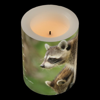 Friends & Blessings Friendship Quote Raccoons Flameless Candle