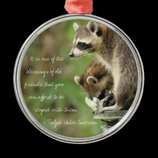 Friends & Blessings Friendship Quote Raccoons Metal Ornament