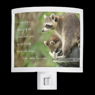 Friends & Blessings Friendship Quote Raccoons Night Light