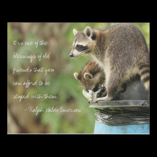 Friends & Blessings Friendship Quote Raccoons Panel Wall Art