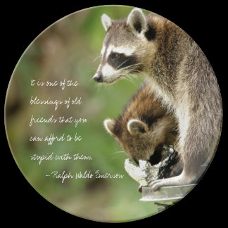 Friends & Blessings Friendship Quote Raccoons Plate