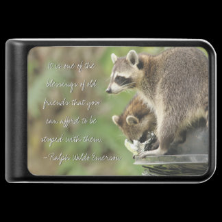 Friends & Blessings Friendship Quote Raccoons Power Bank