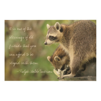 Friends & Blessings Friendship Quote Raccoons Wood Print