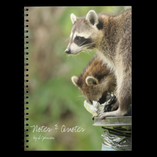 Friends & Blessings Friendship Raccoons Journal