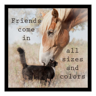 Friends come in all sizes and colors poster