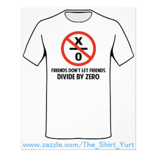 Friends Don't Divide by Zero Flyer