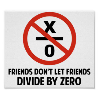 Friends Don't Divide by Zero Poster