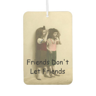 Friends Don't Let Friends Do Silly Things Alone Car Air Freshener