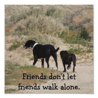 Friends don't let friends walk alone Poster