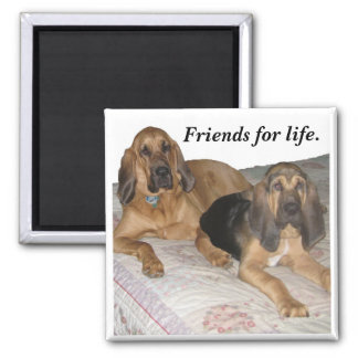 Friends for life. 2 inch square magnet