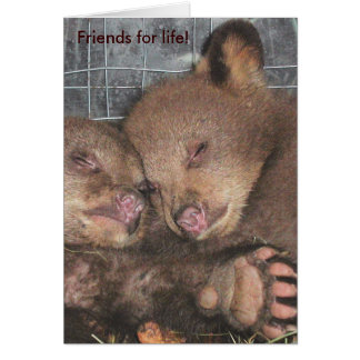 'Friends for life!' Note Card