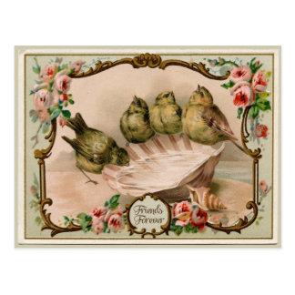 Friends Forever Bird Vintage Reproduction Postcard