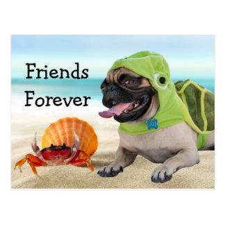 Friends Forever: Crab + Turtle Pug Postcard