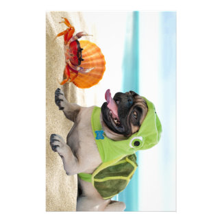 Friends Forever: Crab + Turtle Pug Stationery