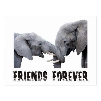 Friends Forever Elephants hugging / kissing Postcard