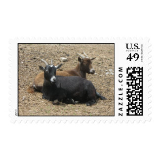 Friends Forever Goats Postage