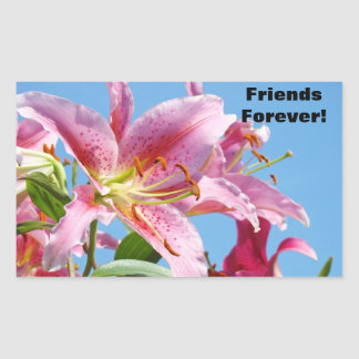 Friends Forever! stickers Pink Lily Flowers Sky