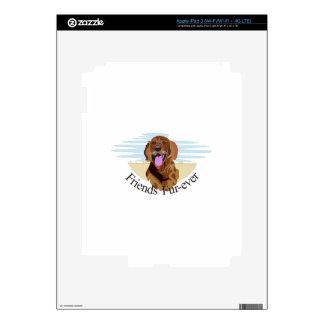 Friends Fur-Ever iPad 3 Skins