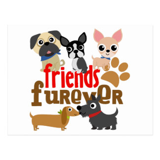 Friends Furever Dogs Puppies Postcard