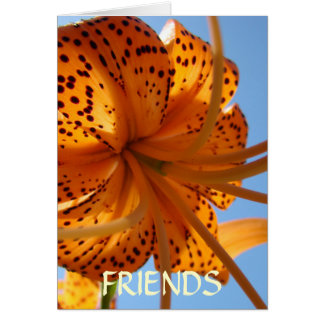 Friends LILY FLOWERS GREETING CARDS NOTE CARD