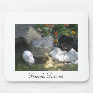 Friends Mouse Pad