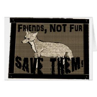 Friends not fur 2 cut out.jpg card