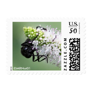 Friends of Mint 057, 20140727 Postage