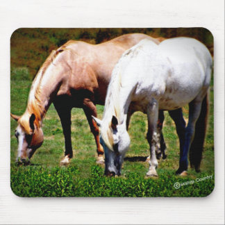"""""""Friends"""" Pair of Horses Mouse Pad"""