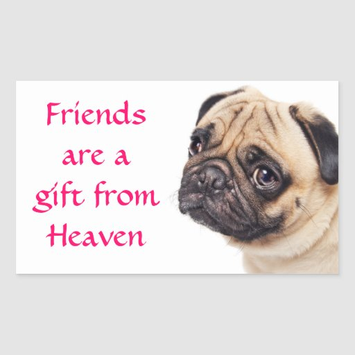 Friends Pug Puppy Dog  Greeting Stickers