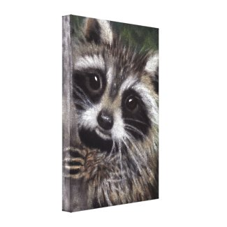 Friends? Raccoon Canvas Print