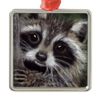 Friends? Raccoon Ornament