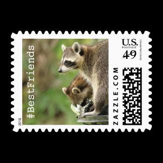 Friends Raccoons Custom Postage