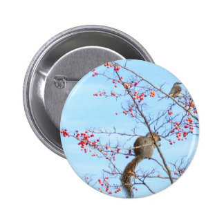 Friends - Squirrel and Bird Friends Eating Berries Buttons