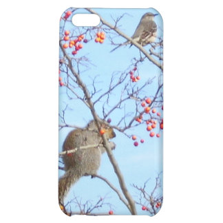 Friends - Squirrel and Bird Friends Eating Berries iPhone 5C Covers