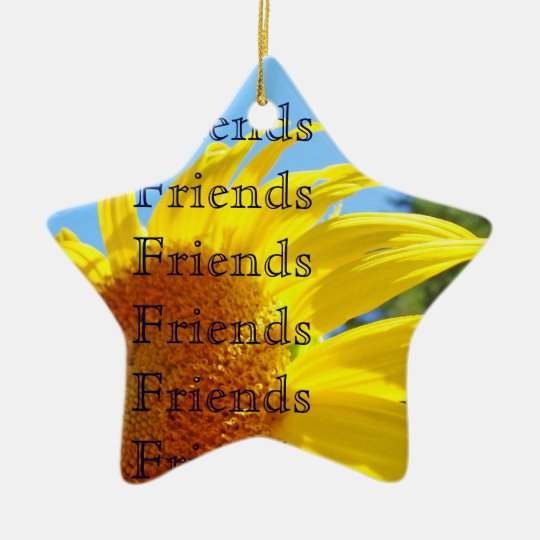 Friends Thank You Wonderful Friend Ornament gifts