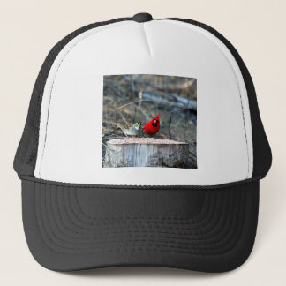 Friends Trucker Hat