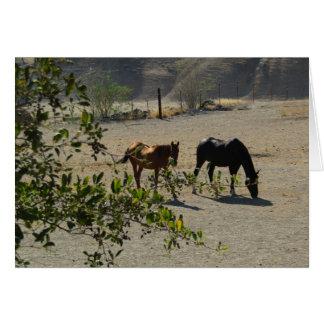 Friendship Card: Horses in San Miguel, California Card