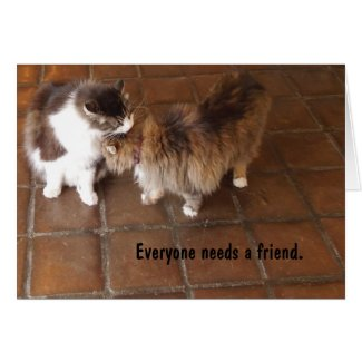 Friendship Card, Peach Canyon Winery Cats Greeting Card