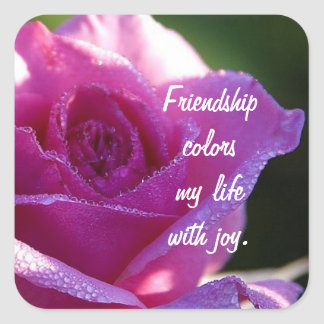 Friendship Colors my Life Square Sticker