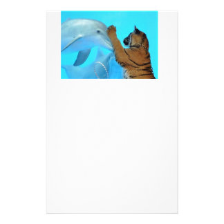 Friendship: Dolphin and Tiger meet Stationery