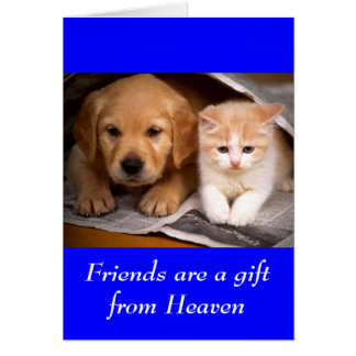 Friendship Golden Retriever Puppy Kitten Card