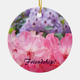 Friendship! ornament Pink Rhodies Holiday ornament